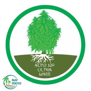 Auto NP Ultra Mass Feminized Seeds (Oasis Genetics)