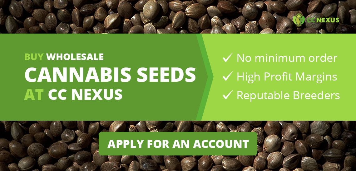 Buy wholesale cannabis seeds